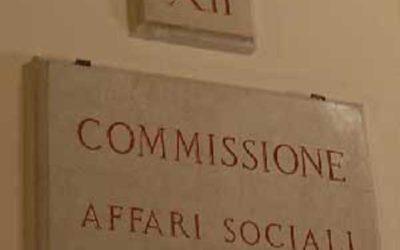 La FICT in audizione informale presso la XII Commissione (Affari sociali) della Camera dei deputati
